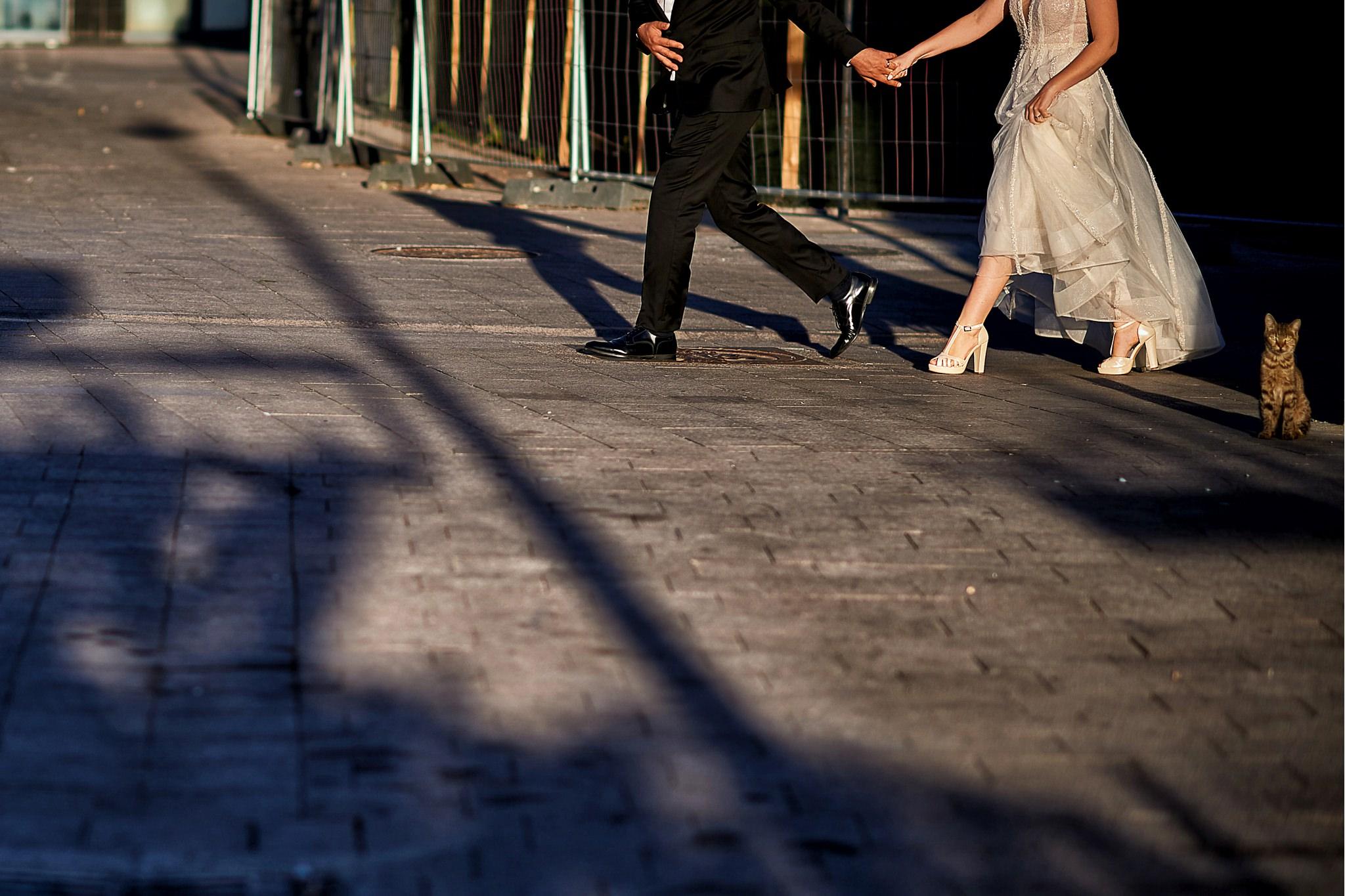 56 nunta constanta